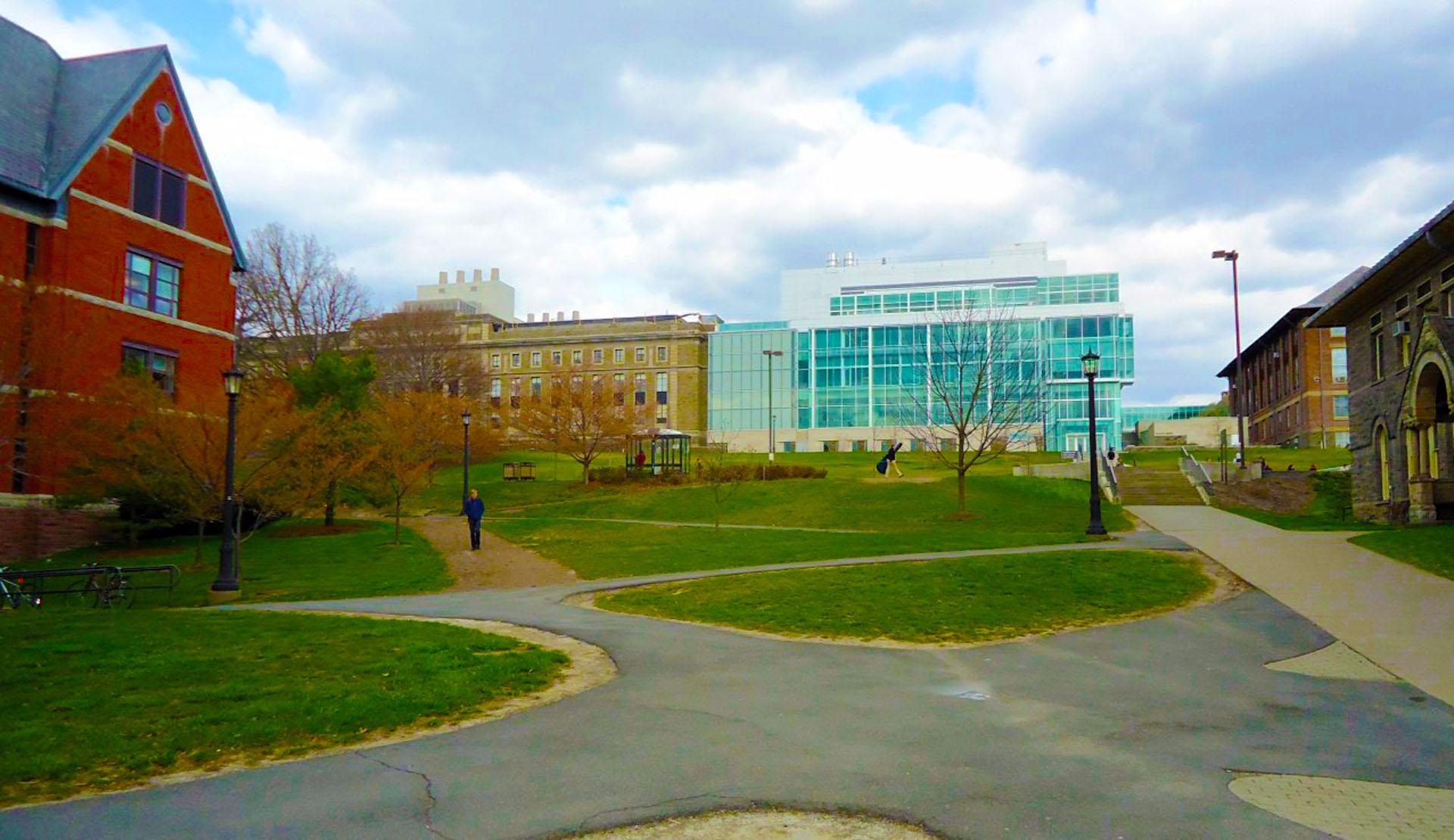 Cornell #16